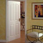 Beyaz renk kapı modeli