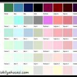 Salon duvar renk kataloğu